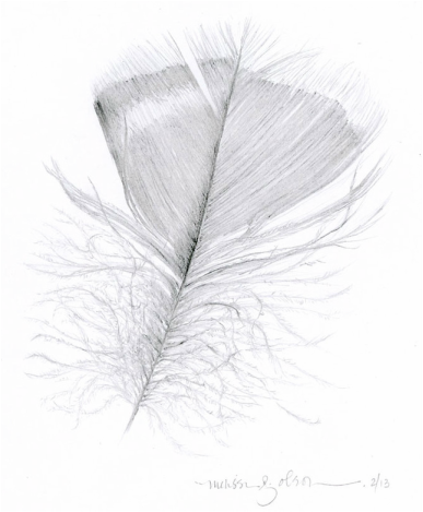 graphite drawing of feather